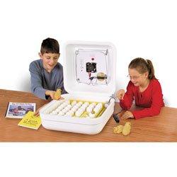 Nasco's Classroom Incubator Kit - C28125B by Nasco