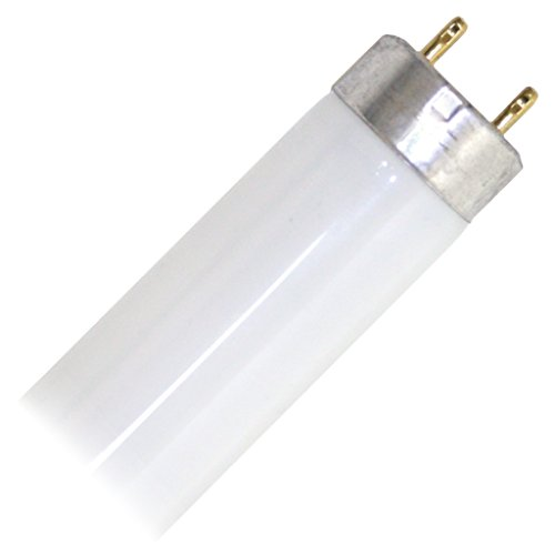 GE 10310 F30T8 Straight Fluorescent