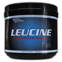 Serious Nutrition Solutions Leucine - 500 grammes