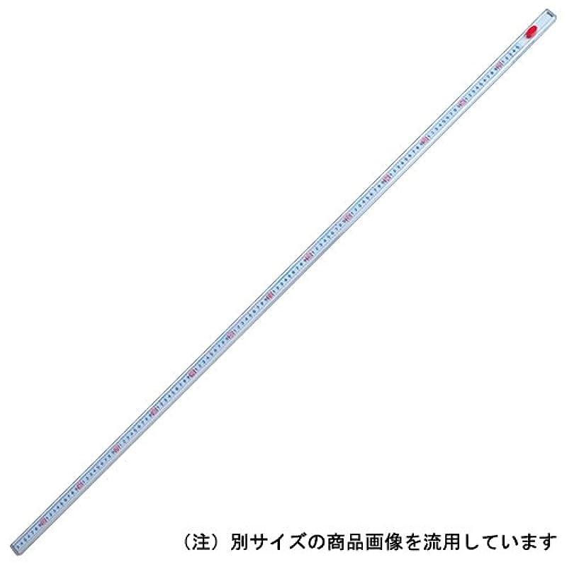 Shinwa Sokutei 3배 양방향식 눈금 통치자 6510