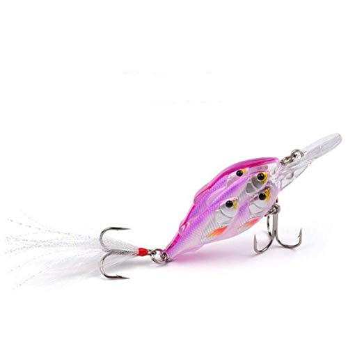 (Ameglia Fishing Plastic Squid Sleeve-Fish Lures Crankbait Casual Tackle Best%Y! (Color - D))