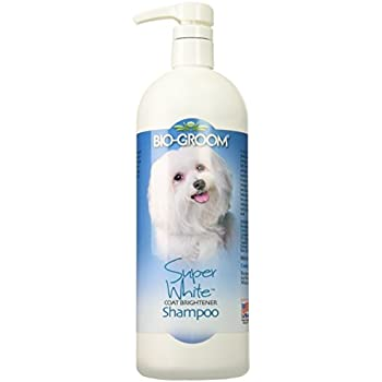 BioGroom Super White Shampoo (32 fl oz)