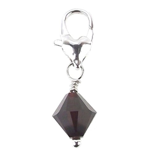 LaFenne Clip On Birth Month Charm Made with Crystal From Swarovski for Link Memorial Bracelet Necklace (Garnet - - Crystal January Charm