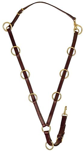 Tory Bridle Leather 10 Ring Training Martingale
