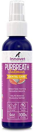 INNOVETPET PurBreath Oral Care Gel for Dog & Cats – 120 ML No Toothbrush Dental Care for Bad Pet Breath. Fights Tartar, Plaque, Gum Disease.100% Natural Ingredients | Made in USA