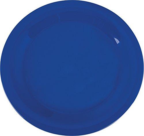 10.5 Melamine Plate (Carlisle 3300214 Sierrus Narrow Rim Melamine Dinner Plates, 10.5