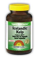 Icelandic Kelp - Vegetarian Nature's Life 250 Tabs