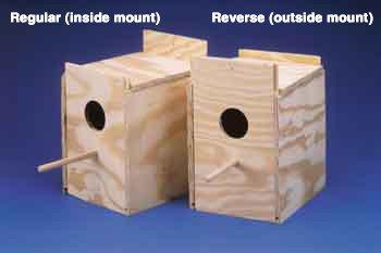 Cockatiel Nest Bird House Type: Reverse