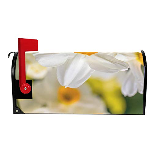 THKDSC Beautiful White Daffodil Flower Mailbox Covers Standard Size  Original Magnetic Mail Cover Letter Post Box 21\
