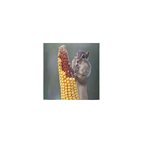 Christmas/New Year Gifts Cute Squirrel Eating Corn Thin Soft Towel 13