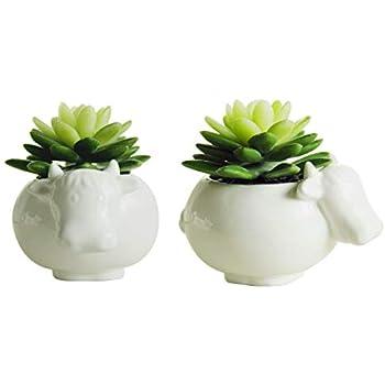 Sea Star Cow Flower Pot Modern White Ceramic Succulent Planter Pots