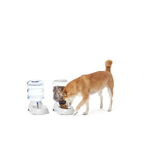 AmazonBasics Small Gravity Pet Food Feeder and Water Dispenser Bundle (Cat Feeding Bowl)