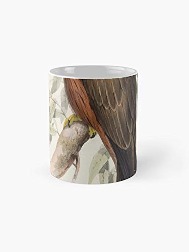 John Gould The Birds Of Europe 1837 V1 V5 029 Black Kite 11oz Mug - Best gift for family -