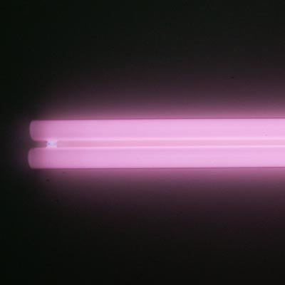 - 65 Watt Plant Grow Pink Power Compact Straight Pin Aquarium Light