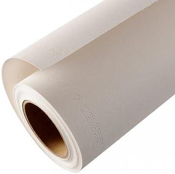 Canson C a grain Rouleau de papier /à dessin Blanc 1.5 x 10 m wei/ß
