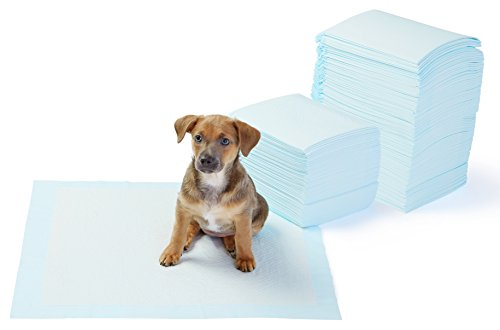 AmazonBasics Regular Pet Dog and Puppy Training Pads - Pack of 150