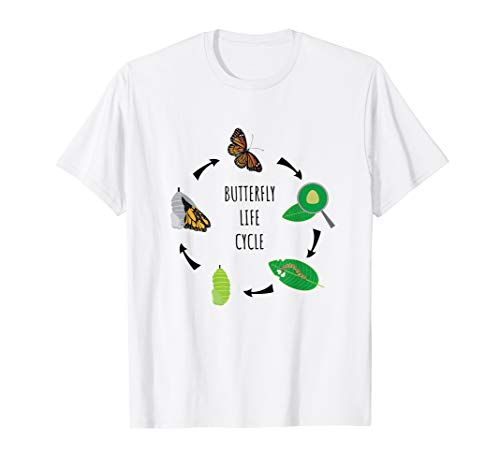 Caterpillar Butterfly Life Cycle Biology Science T-Shirt