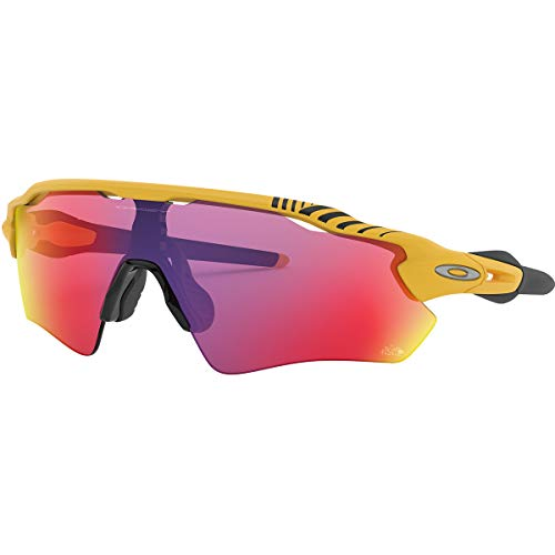 Oakley Radar Ev Path Tour de France 2019 Edition Sunglasses,OS,Matte Yellow/Prizm Road (Best Road Bike Glasses 2019)
