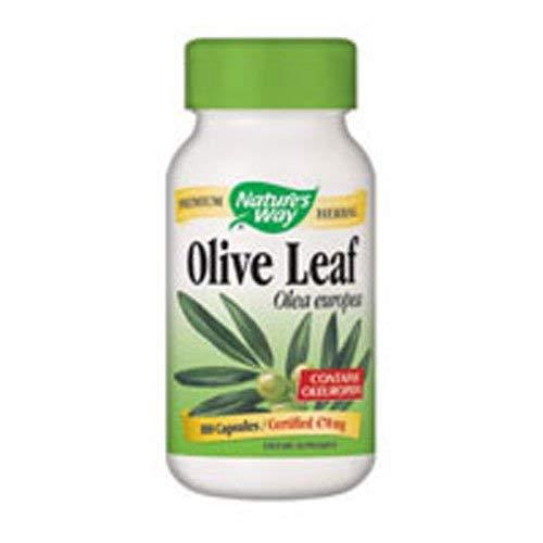 Nature's Way, Olive Leaf, 100 -
