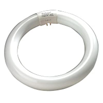 6 Qty. Halco 22W FC8 T9 8IN CircLine Daylight FC8T9DL 22w Linear Fluorescent Rapid Start Daylight Lamp Bulb