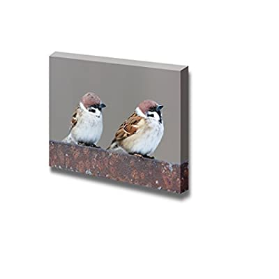 Handsome Craft, Made For You, Tree Sparrow (Passer Montanus) in The Nature Wall Decor