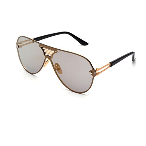 dajb-csg700020c2-fashionable-resin-lens-gorgeous-sunglassesmetal-frames-non-polarizer