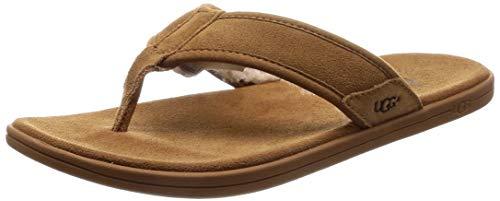 UGG Men's Seaside FLIP Tasmania Flop, chestnut, 11 Medium US (Sandals Mens Ugg)