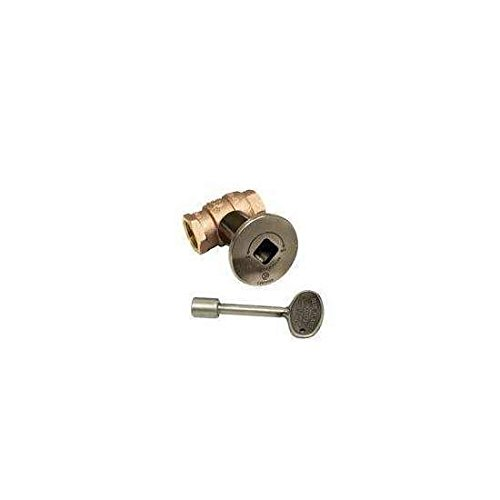 Hearth Products Controls HPC 3/4-Inch Straight Gas Fire Pit Shut Off Valve Kit (MSPW-HC), Pewter Flange and Key by Hearth Products Controls