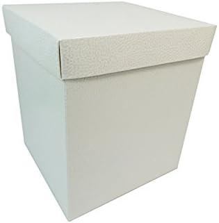 Unidades 2 Caja Fondo Tapa 20 x 20 x 23 cm efecto piel: Amazon.es: Hogar