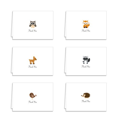 Guajolote Prints Cute Animals Collection Thank You Cards - 12 Cards & Envelopes