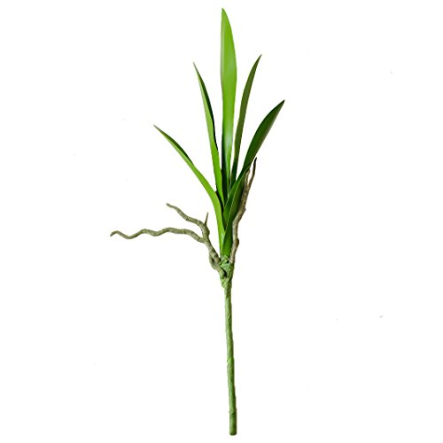 Cymbidium Leaf - JAROWN Artificial Leaves Green Plants Real Touch Cymbidium Orchid Fake Branches for Garden Home Decoration (2pcs)