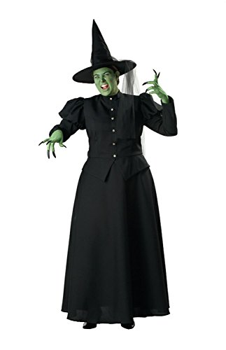 Witch Adult Costume - Plus Size 3X