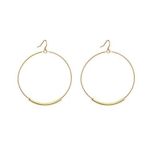Statement Hoop Earring Rose Gold Plated Dangle Drop Hook Nickel Free Hypoallergenic Unique Christmas Gifts Xmas Gifts Birthday Gifts for Women Girls Gifts for Girlfriend Anniversary Gifts for Her (Hoop Drop Delicate)