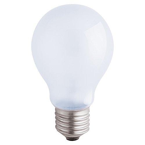 trum 60 Watt Frosted Light Bulb ()