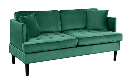Mid Century Modern Velvet Loveseat Sofa with Tufted Seats (Green)