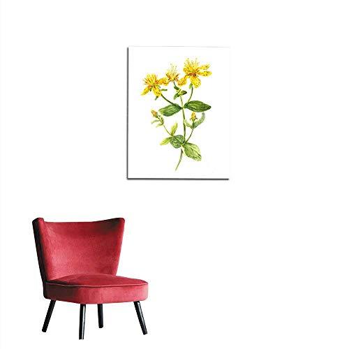 longbuyer Wallpaper Hypericum Flower John s Wort Plant Watercolour Mural 20