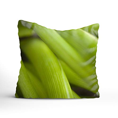Earth Grass Home Printed Cushion Cover, Pillowslip for Home Sofa Couch Chair Back Seat (White Sox Cushion Seat Chicago)