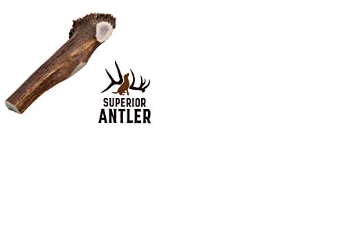 1-X Large Antler, Split, Single Pack - XL All Natural Premium Grade A. Antler Chew. Naturally Shed, Hand-Picked, and Made in The USA. NO Odor, NO Mess. Guaranteed Satisfaction. for Dogs 45+LBSL