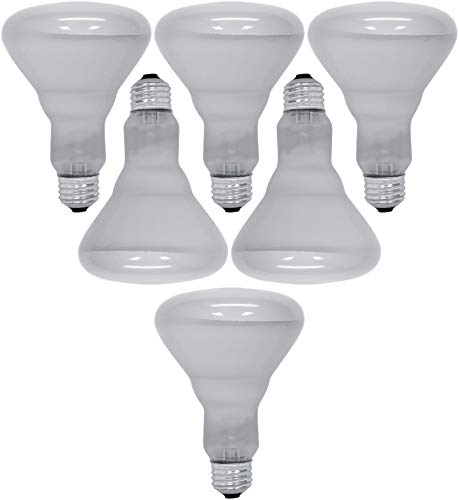 (GE Lighting 65 Watt 610 Lumens Soft White Reflector Floodlight BR30 Light Bulb (6 Bulbs))