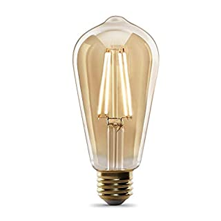 "Feit Electric  ""Original"" Vintage Exposed Filament Amber Glass Soft White (2100K) Dimmable ST19 LED Light Bulb (ST19/VG/LED)"