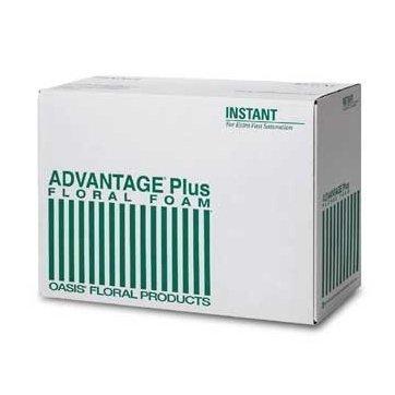 Oasis Advantage Plus Floral Foam (Case of 24 Bricks (24)