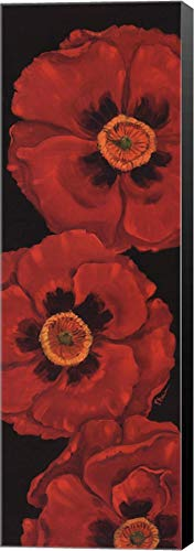 Bella Grande Poppies - Bella Grande Poppies by Paul Brent Canvas Art Wall Picture, Museum Wrapped with Black Sides, 12 x 36 inches