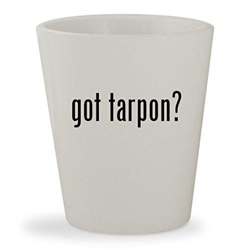 Tarpon Seat (got tarpon? - White Ceramic 1.5oz Shot Glass)
