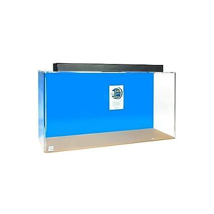 amazon com acrylic rectangle aquarium 60 gallon blue pet supplies