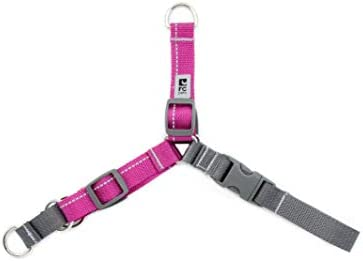 RC Pet Products Pace No Pull Dog Harness Large Mulberry (68605083)