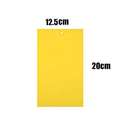 GoodLock 1Pcs Strong Flies Traps Bugs Sticky Board Catching Aphid Insects Pest Killer (12.520cm) -