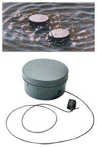 Lucky Duck Quiver Magnet H2O