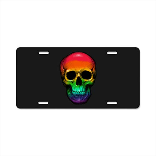 (KuyuqudGVg Sweet Skull License Plate Decorative Front Plate 6 X 12)