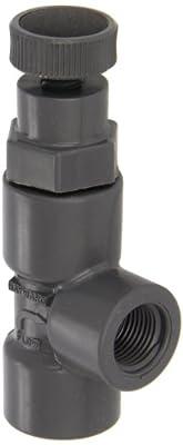 "Hayward PVC Globe Valve, FPM Seal, 1/2"" Threaded by Hayward"