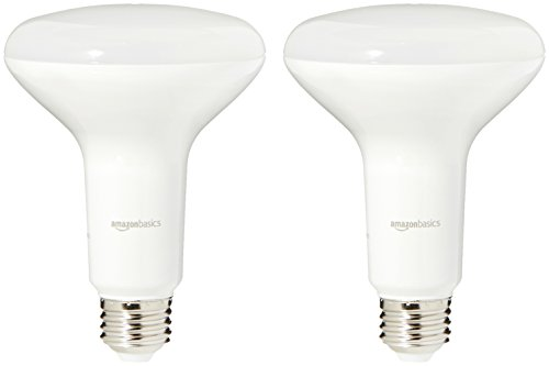 AmazonBasics 65 Watt Equivalent, Daylight, Dimmable, BR30 LED Light Bulb | 2-Pack